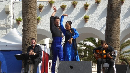 flamenco-1924139_1920.jpg