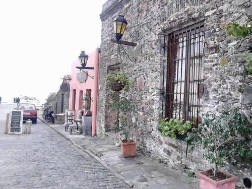 Colonia 10